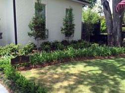 uptown garden and land care
