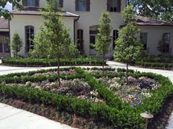garden district lawn care